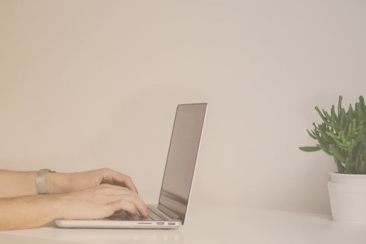 person writing on their laptop against white wall with green plant